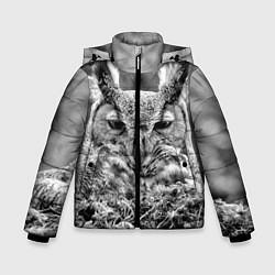 Куртка зимняя для мальчика Ночной филин цвета 3D-черный — фото 1