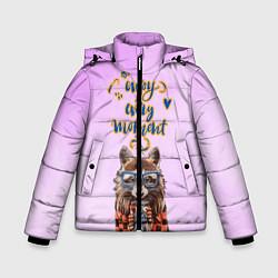 Куртка зимняя для мальчика Енот цвета 3D-черный — фото 1