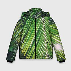Куртка зимняя для мальчика Пальмы цвета 3D-черный — фото 1