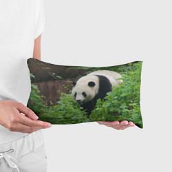 Подушка-антистресс Панда в лесу цвета 3D — фото 2