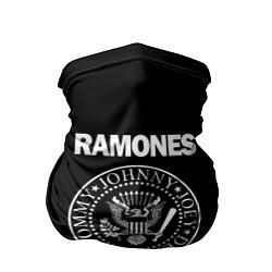 Бандана-труба RAMONES цвета 3D — фото 1