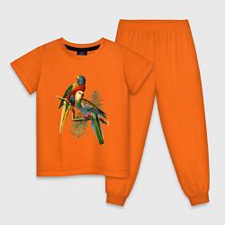 Пижама хлопковая детская Тропические попугаи цвета оранжевый — фото 1