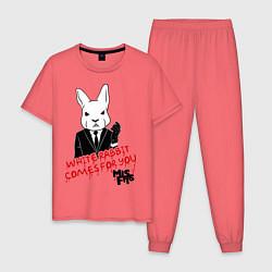 Пижама хлопковая мужская Misfits: White rabbit цвета коралловый — фото 1