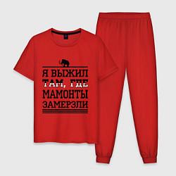 Пижама хлопковая мужская Я выжил там, где мамонты замерзли цвета красный — фото 1