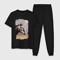 Пижама хлопковая мужская Лошадка цвета черный — фото 1