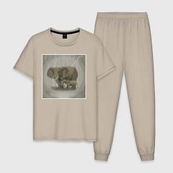 Пижама хлопковая мужская Слоны цвета миндальный — фото 1