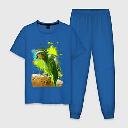 Пижама хлопковая мужская Зеленый попугай цвета синий — фото 1