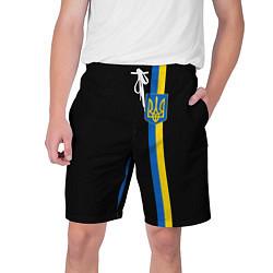 Шорты на шнурке мужские Украина цвета 3D — фото 1