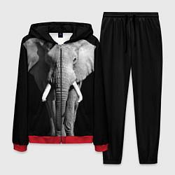 Костюм мужской Старый слон цвета 3D-красный — фото 1