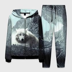 Костюм мужской Волк в горах цвета 3D-черный — фото 1