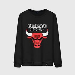 Свитшот хлопковый мужской Chicago Bulls цвета черный — фото 1