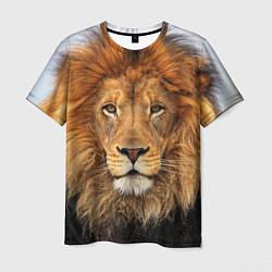 Футболка мужская Красавец лев цвета 3D — фото 1