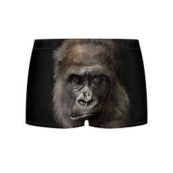 Трусы-боксеры мужские Глаза гориллы цвета 3D-принт — фото 1