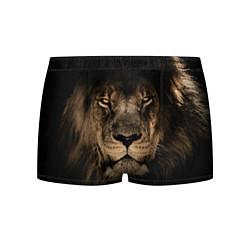 Трусы-боксеры мужские Львиный взгляд цвета 3D-принт — фото 1