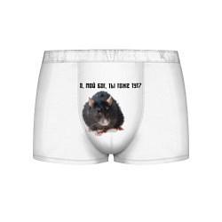 Трусы-боксеры мужские Крыса цвета 3D-принт — фото 1