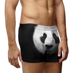Трусы-боксеры мужские Взгляд панды цвета 3D — фото 2