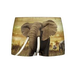 Трусы-боксеры мужские Могучий слон цвета 3D — фото 1