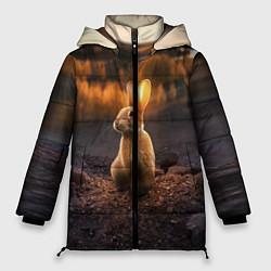 Женская зимняя 3D-куртка с капюшоном с принтом Солнечный зайчик, цвет: 3D-черный, артикул: 10164198706071 — фото 1