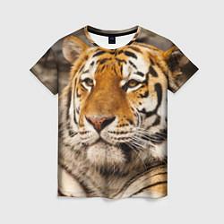 Футболка женская Мудрый тигр цвета 3D — фото 1